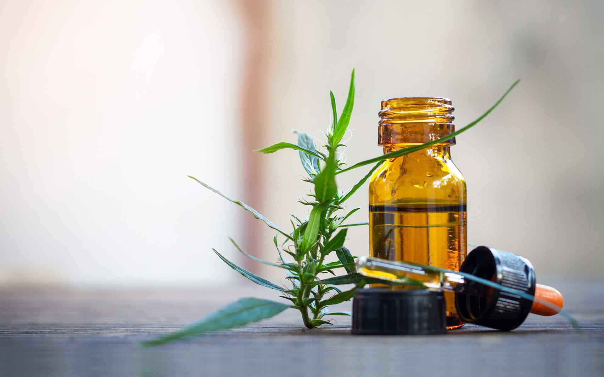 Medical Cannabis Tincture and Cannabis Leaf