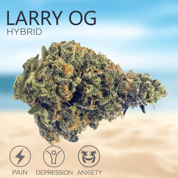 Tropizen's Larry OG Hybrid Cannabis Bud